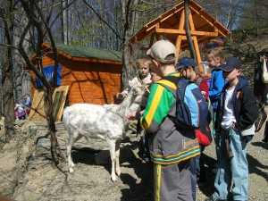 leśny-park-szkolne