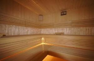Jarnołtówek Ziemowit sauna sucha